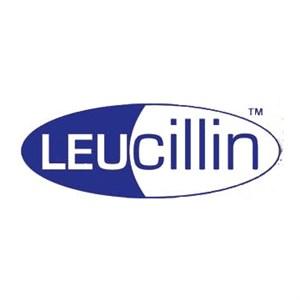 Leucillin Antiseptic Spray